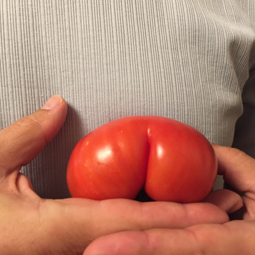 tomatobutt