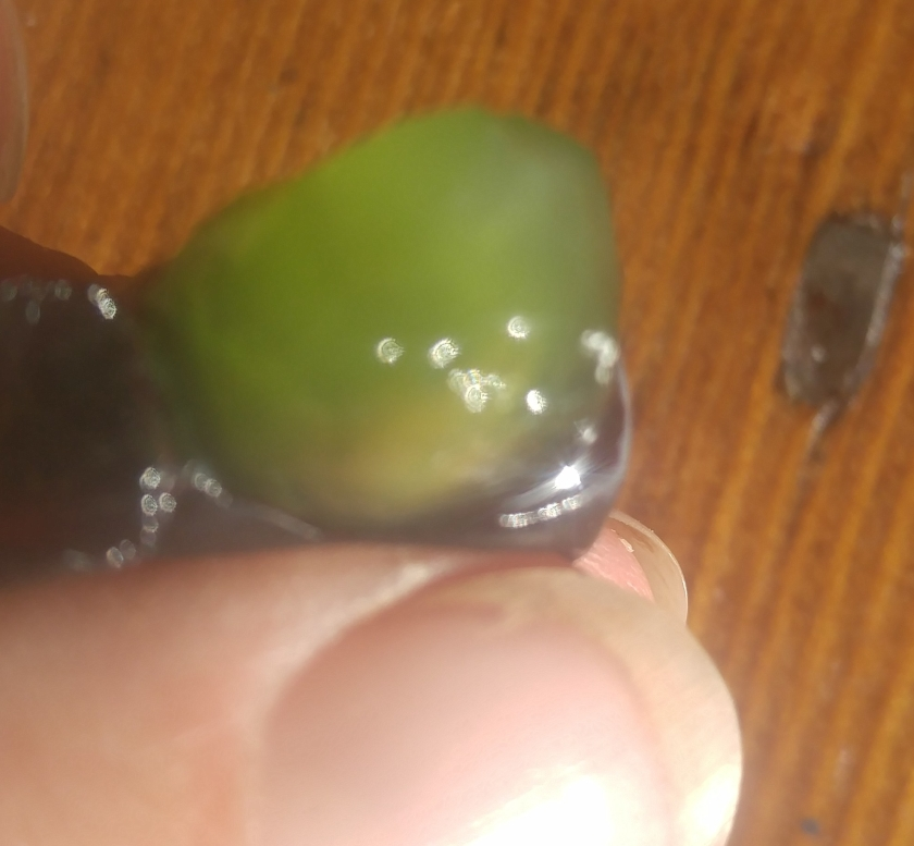 fingers squeezing grape